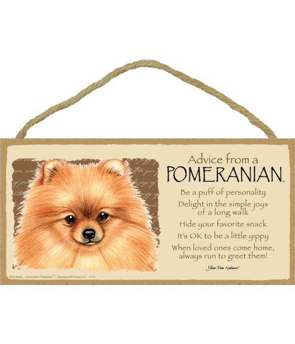 Advice from a Pomeranian 5x10