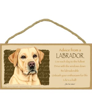 Advice from a (Yellow) Labrador 5x10