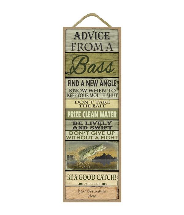Advice from a Bass 5x15 Plank