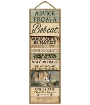 Advice from a Bobcat 5x15 Plank