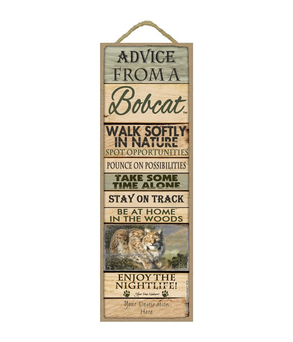 Advice from a Bobcat 5x15 Plank