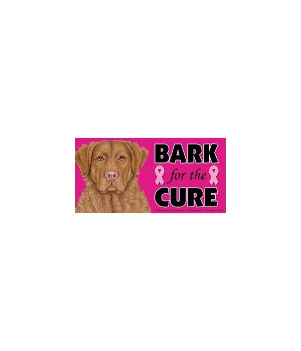 Bark for the Cure Chessie (Chesapeake Ba