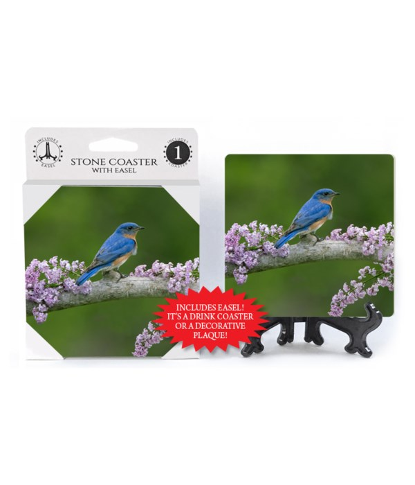 Blue Bird - Lilac branch
