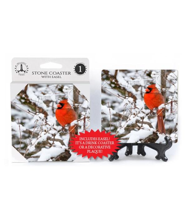 Cardinal - snowy tree
