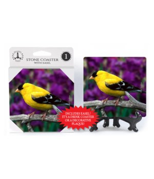 Goldfinch - Purple flower bkgd