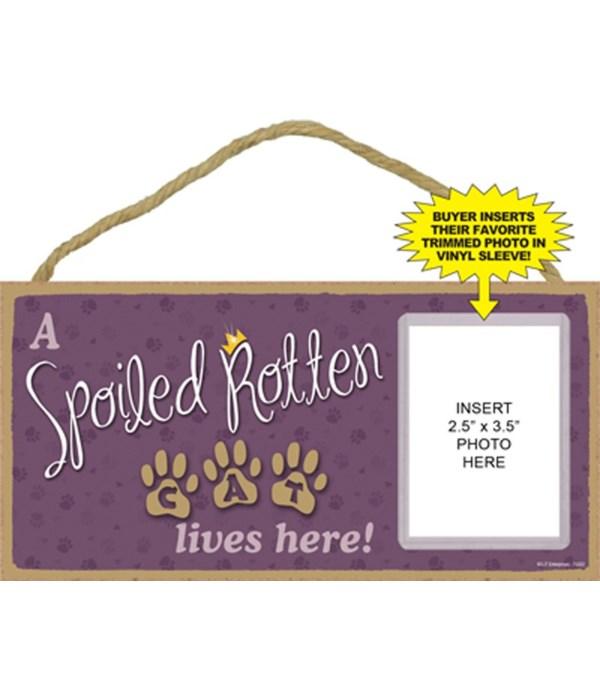 Spoiled cat picture 5x10 plaque