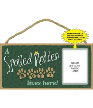 Spoiled Mutt  picture 5x10 plaque