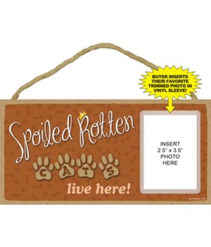 Spoiled Cats picture 5x10 plaque
