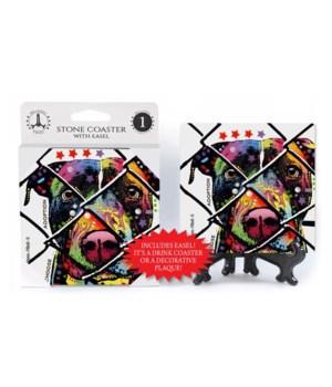 Pitbull - 9 - Choose Adoption  coaster 1