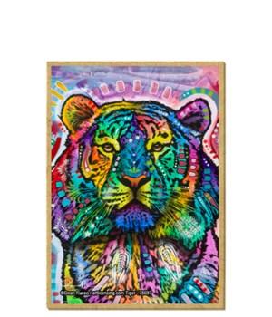 Tiger - Curious Tiger (V) DR Magnet