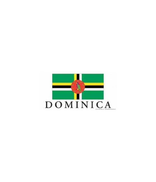 Dominica 4x8 Car Magnet
