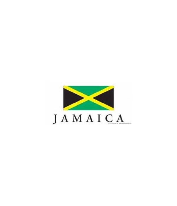 Jamaica 4x8 Car Magnet
