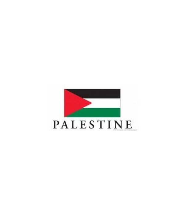 Palestine 4x8 Car Magnet