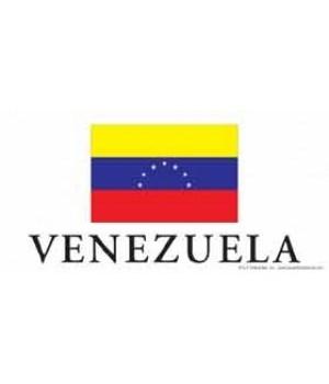 Venezuela 4x8 Car Magnet