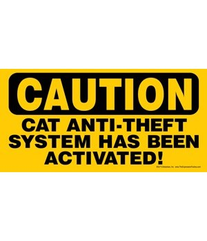 CAUTION - Cat anti-theft system has been