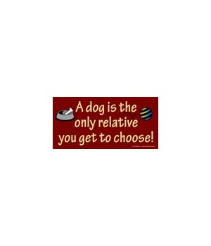 A dog is the only relative you get to ch