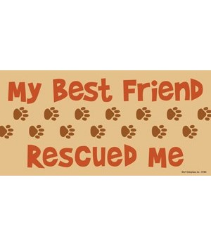 My Best Friend Rescued Me 4x8 Car Magnet