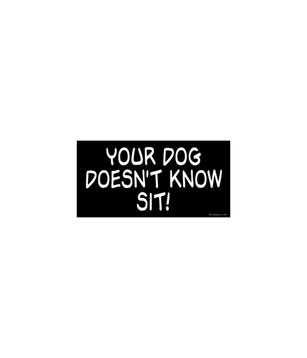 Your Dog Doesn't Know Sit! 4x8 Car Magne