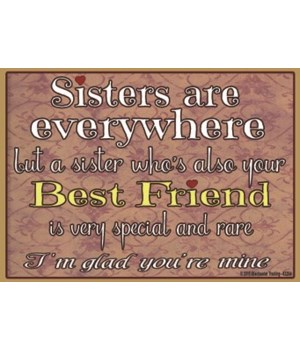 Sisters are everywhere Magnet