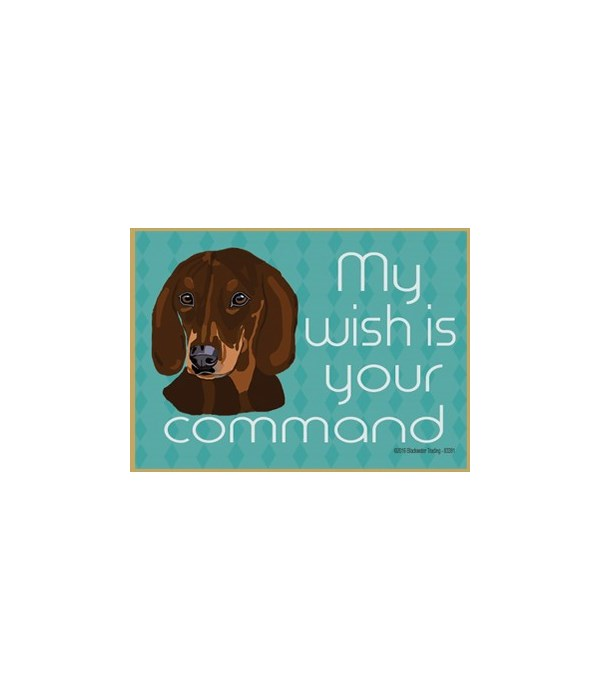 my wish is your command - brown dachshun