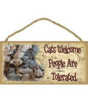 Kittens-cats welcome people are tollerat