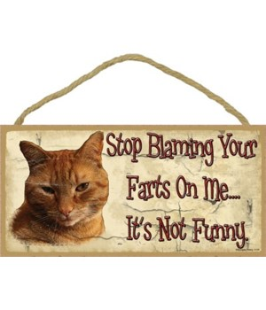Orange Tabby-Stop blaming your farts on