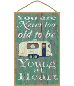 You are never too old to be young - camp