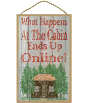 What happens at the cabin ends up online
