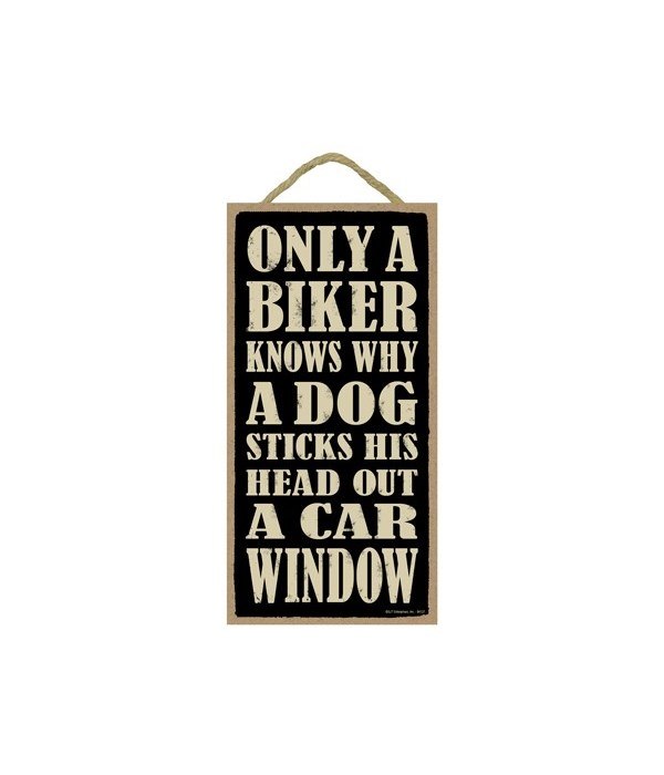 Only a biker knows why a dog sticks his