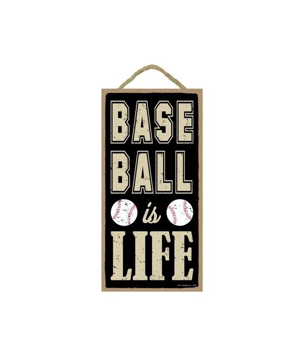 Baseball is life 5x10