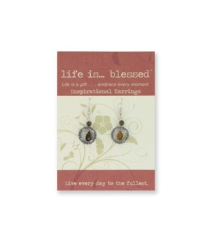 Inspirational Earrings 14PC-Discontinued