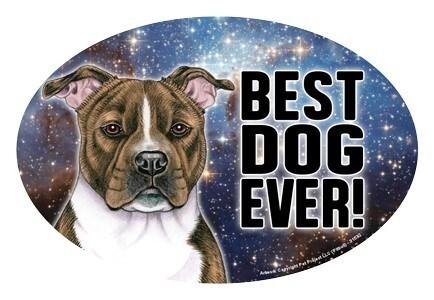 Best Dog Ever!
