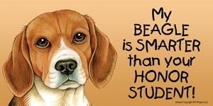 Dog is Smarter