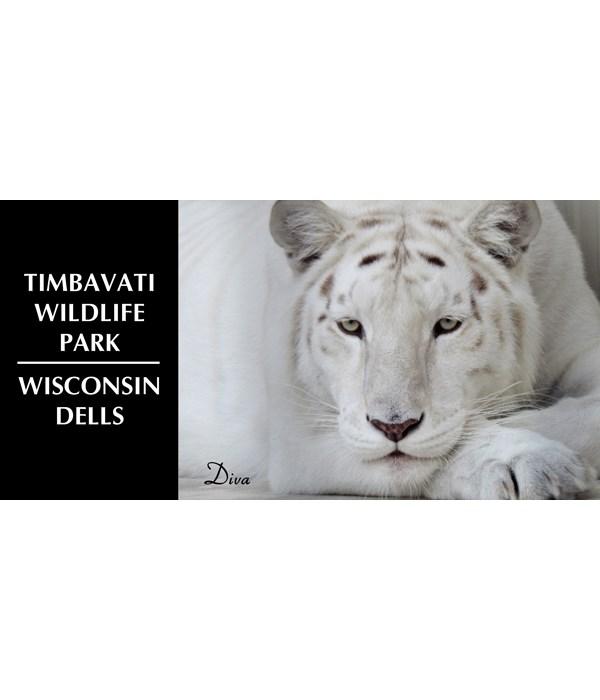 Timbavati Wildlife Park - Diva 4x8 Magnet