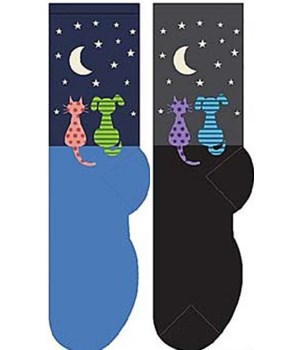 Star Gazing Cat & Dog - Women's Crew