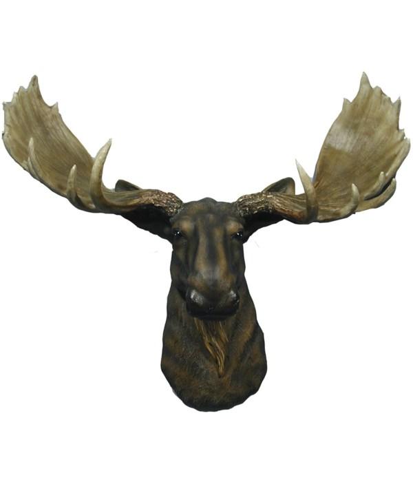 """L23.5"""" Emperor (Moose Head) 1PC"""