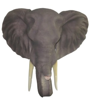 "20"" Sahara (Elephant Head) 1PC"