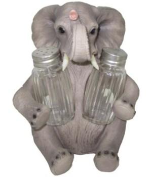 "7"" Pachy Spice (Elephant S/P) 12PC"