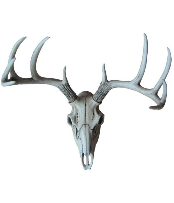 "L18.5"" Weathered Glory (Deer Skull) 1PC"