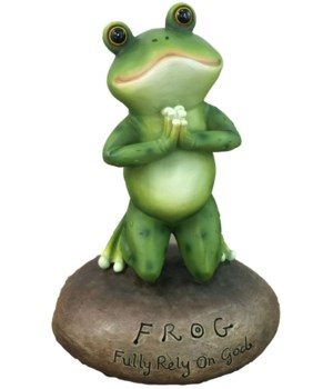 "6.5"" Frog on Stone 12PC"