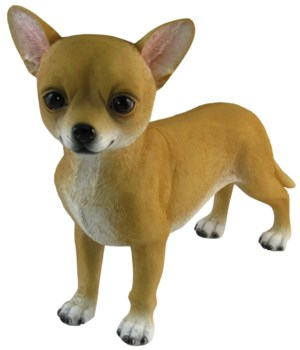 "L8"" Chiquito (Standing Chihuahua Figurin"