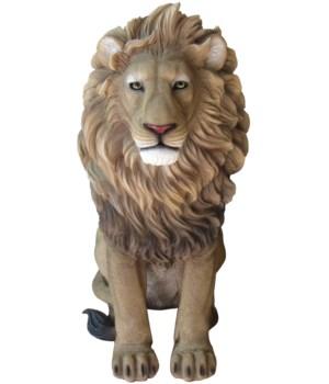 "21"" Leonidas (Sitting Lion) 1PC"