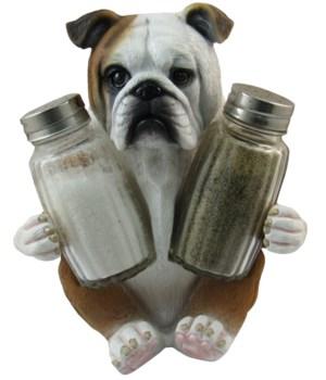 "6"" Bully Spice (Bulldog S/P) 12PC"