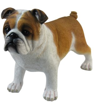 """L8"""" Wilfred (Standing Bull Dog) 12PC"""