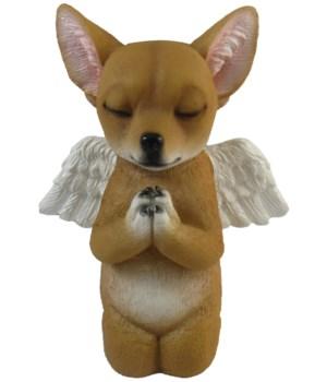 "5"" Praying Chihuahua 12PC"