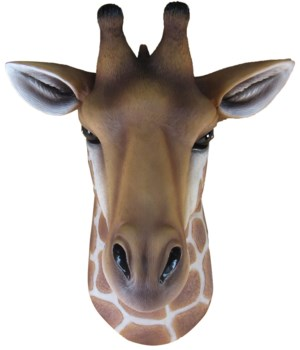 "10.5"" Kenya (Small Giraffe Bust) 4PC"