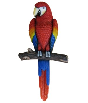 """13.85"""" Parrot On Branch Wall Hanger 6PC"""
