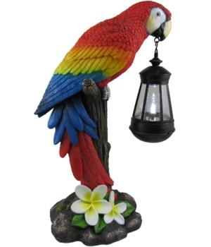 Tropical Glow (Parrot Lantern) 1PC