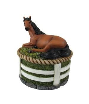 "Horse trinket box 5"""
