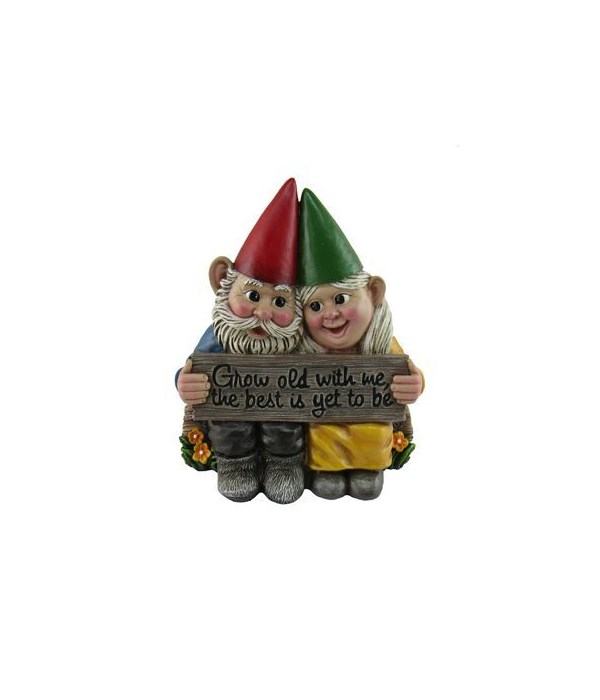 Growing Old Together(Gnomes)